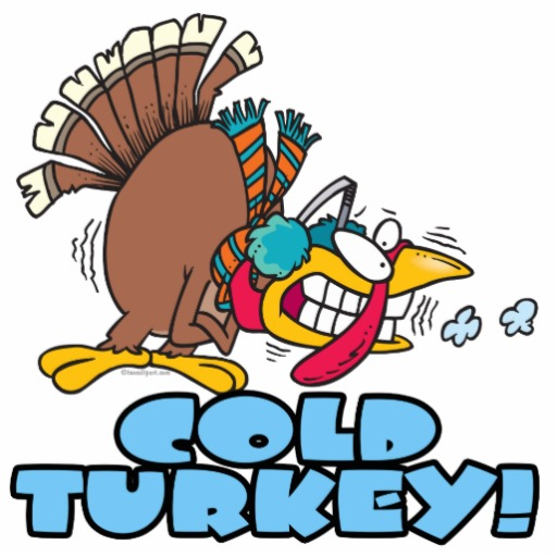 Image result for cold turkey
