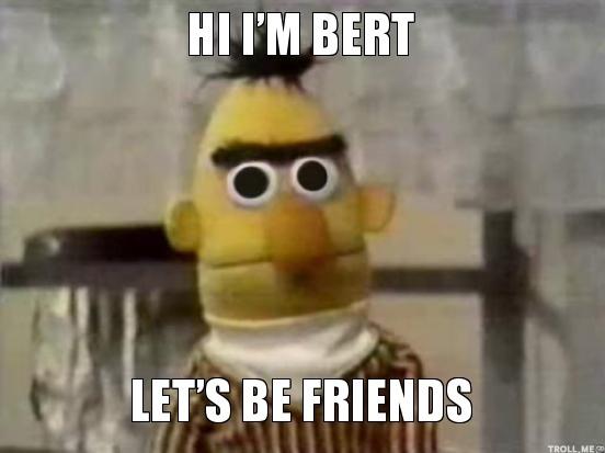 hi im bert lets be friends